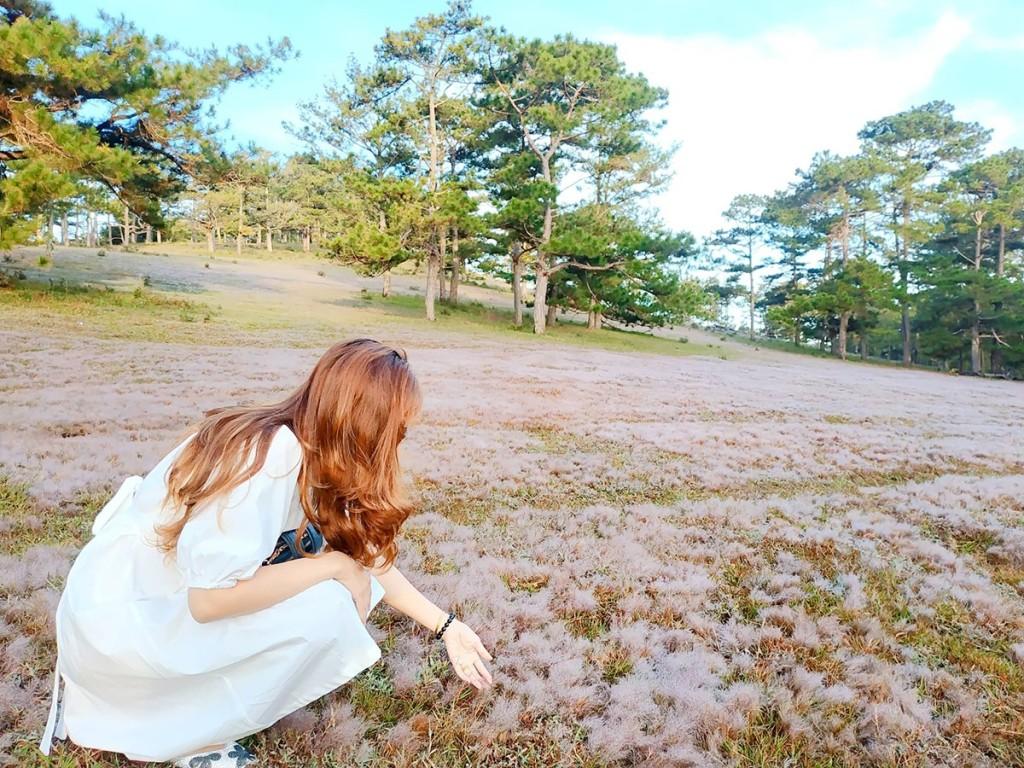 """Dành cả buổi sáng để thăm thú, chụp ảnh, chị Ngọc Hạnh (du khách TP HCM) phấn khích cho biết: """"Đây là lần đầu tiên tôi được ngắm cỏ hồng. Khung cảnh rất nên thơ, giống như tôi đang ở nơi nào đó ở nước ngoài chứ không phải Việt Nam""""."""