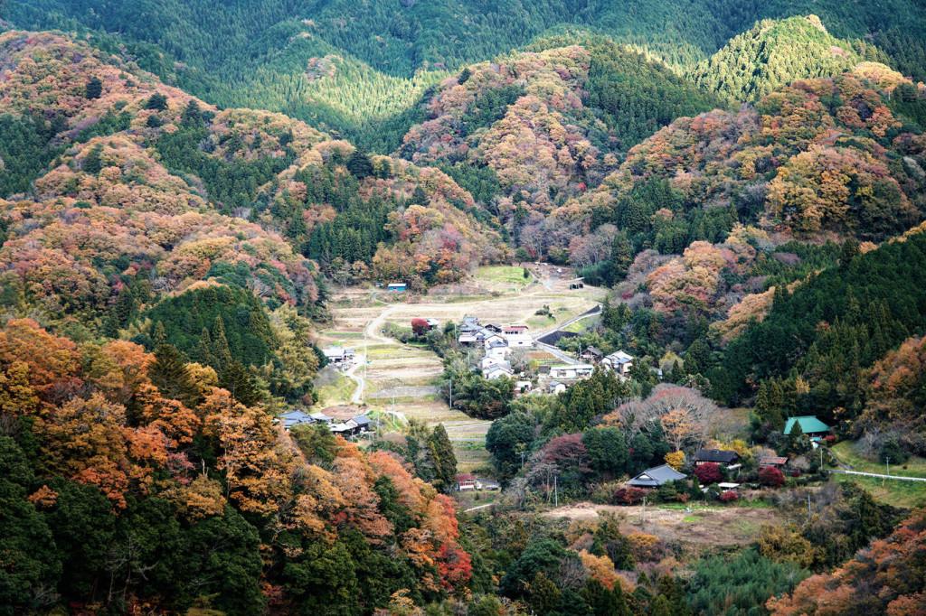 Nếu mùa xuân, đất nước mặt trời mọc thu hút du khách với hoa anh đào khoe sắc thì khi thu về, bạn sẽ không khỏi ngỡ ngàng trước khung cảnh được tạo nên bởi những hàng cây phong, rẻ quạt hoặc cây momiji. Tỉnh Ibaraki, thung lũng Ryujinkyo là một trong những nơi bạn nhất định phải ghé thăm vào cuối tháng 11.
