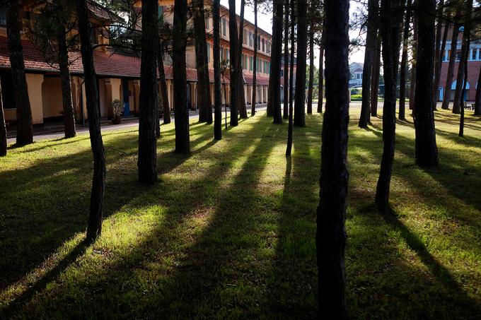 Trường sở hữu khuôn viên nhiều cây xanh nên du khách có thể tản bộ, nghỉ ngơi khi mỏi chân. Vào tham quan khách không mất phí nhưng phải xin phép. Giờ mở cửa cho khách từ thứ 2 tới thứ 7 là 11h30 tới 13h và sau 16h30; chủ nhật mở cửa cả ngày.