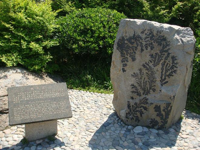 """Đào Hoa đảo: Đảo có diện tích 41 km2, là đảo lớn ở Phổ Đà, Chu San, Chiết Giang. Trong tiểu thuyết """"Anh hùng xạ điêu"""" và """"Thần điêu đại hiệp"""" đây là nơi trú ngụ của Đông tà Hoàng Dược Sư, nhân vật võ lâm rất nổi tiếng.  Thực chất, tên gọi Đào Hoa đảo đã có từ mấy nghìn năm trước, không phải vì trên đảo có nhiều hoa đào mà vì khắp nơi đều có những hòn đá được bao phủ bởi nhiều đường vân hình rất giống cây hoa đào, nên được gọi là đá hoa đào. Ảnh: ChinaImage."""