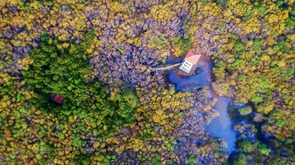 Khu vực tháp canh để khách du lịch phóng tầm mắt ngắm rừng