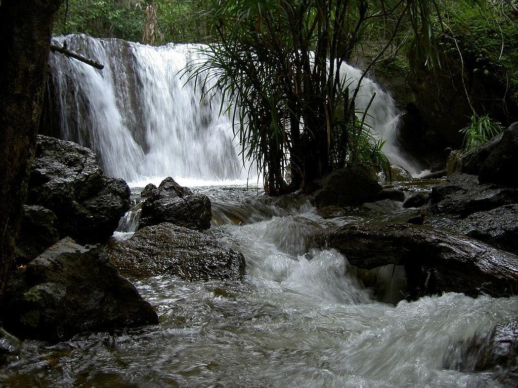 Thác Suối Tranh  Suối Tranh nằm cách thị trấn Dương Đông, Phú Quốc khoảng 10 km. Con suối được tạo nên từ nhiều khe đá nhỏ, chảy từ dãy núi Hàm Ninh. Dòng suối hiền hòa, trong vắt nằm thu mình giữa những tán phong lan rừng, tạo nên bức tranh phong cảnh đẹp mắt. Bạn có thể đi xe máy từ Dương Đông, chạy theo đường 30 tháng 4 hướng về Hàm Ninh, sau đó đi tiếp theo đường TL47 là tới. Đến đây, du khách được đi dạo trên những con đường mòn hẹp, ngắm nhìn thảm thực vật xanh mơn mởn ở hai bên. Bầu không khí trong lành sẽ giúp bạn thư giãn hiệu quả. Ảnh: WikiCommons.