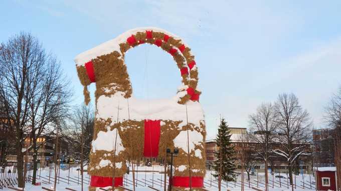 Thụy Điển: Thiêu cháy dê nhồi rơm  Hàng năm, trong mỗi dịp Giáng sinh, dân làng ở thị trấn nhỏ Gavle, Thụy Điển làm một con dê bằng rơm cao 12 m. Truyền thống này bắt đầu từ năm 1966. Người dân địa phương dùng nhiều cách phá hủy nó như thiêu chạy, đâm ôtô hay dùng máy bay để trộm như một nghi thức chào đón năm mới. Ảnh: Daily Beast.