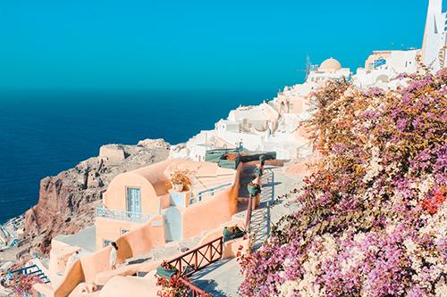 Hoa giấy tạo nên cảnh sắc đặc trưng của vùng đất ven biển.