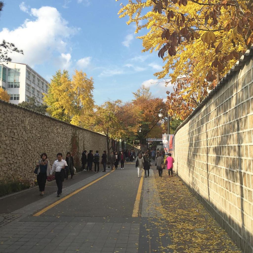 Đường Samcheongdong Doldamgil (Hàn Quốc): Con đường cổ kính đậm nét kiến trúc Hàn Quốc này nằm gần trường THPT Pungmoon và là nơi diễn ra cảnh quay lần chạm mặt định mệnh giữa Kim Shin và Eun-tak dưới trời mưa. Nơi đây vào mùa thu trở nên thơ mộng với lá vàng trải dài khắp phố. Ảnh: Bo_ramai, Mars_sk.