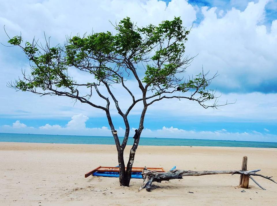 Cây cô đơn Hodota Camping (Vũng Tàu): Hodota Camping hay còn được gọi với cái tên mộc mạc là Hò Dô Ta là khu du lịch sinh thái với một phần đất thuộc huyện Hàm Tân, Bình Thuận. Hình ảnh cây cô đơn giữa mênh mông trời biển và bãi cát trắng mịn đã làm nao lòng rất nhiều du khách khi đến đây. Ảnh: Foody.