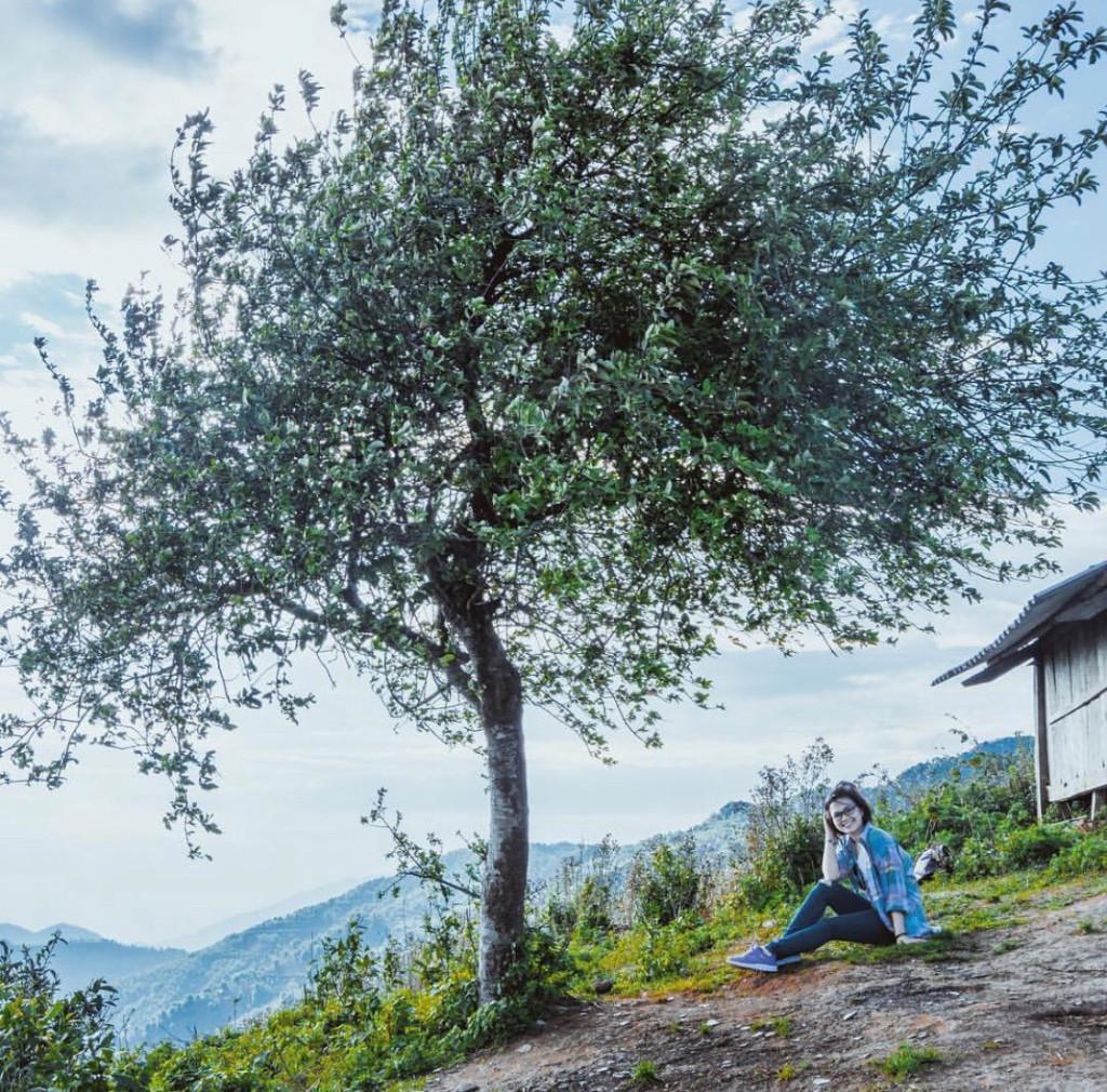"""Cây táo mèo cô đơn (Tà Xùa - Sơn La): Giữa rất nhiều loại cây của """"sống lưng"""" Tà Xùa, bỗng nhiên cây táo mèo cô đơn, nằm chơi vơi bên bờ vực, lại tạo nên """"thương hiệu"""" giữa núi rừng Tây Bắc và có sức hút với không ít du khách ghé thăm. Hình ảnh cây táo mèo trơ trọi nơi đỉnh trời, khung cảnh xung quanh bao la, xanh ngắt tạo nên một bức tranh thiên nhiên đầy nghệ thuật. Vậy nên, chỉ cần đứng vào đây, bất kể trời đông hay hè, bạn đều có một tấm hình """"đảm bảo chất lượng"""". Ảnh: Telesadtmh."""