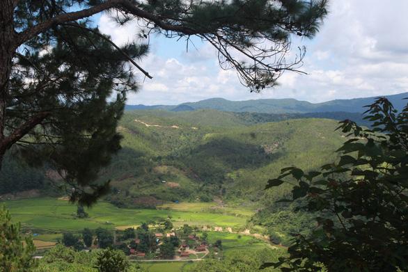 Măng Đen được bao bọc bởi những cánh rừng xanh bạt ngàn