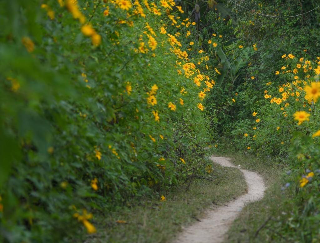 Con đường dẫn vào bản của người Thái, nằm trên lối ra của tuyến tham quan khu di tích Sở Chỉ huy.