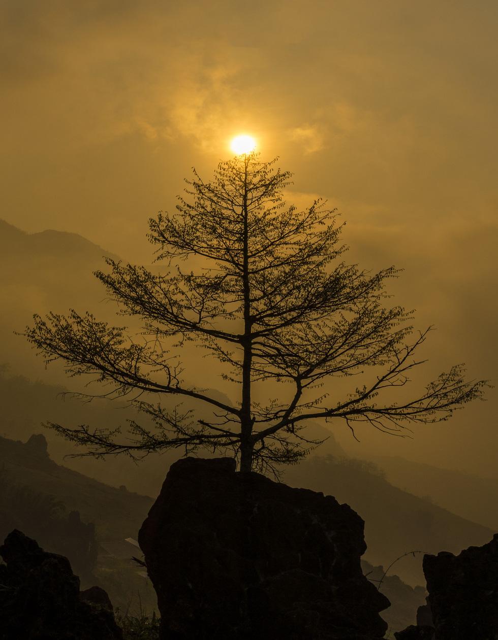 Ngày mới nhìn từ núi Hàm Rồng - Ảnh: NÔNG THANH TOÀN