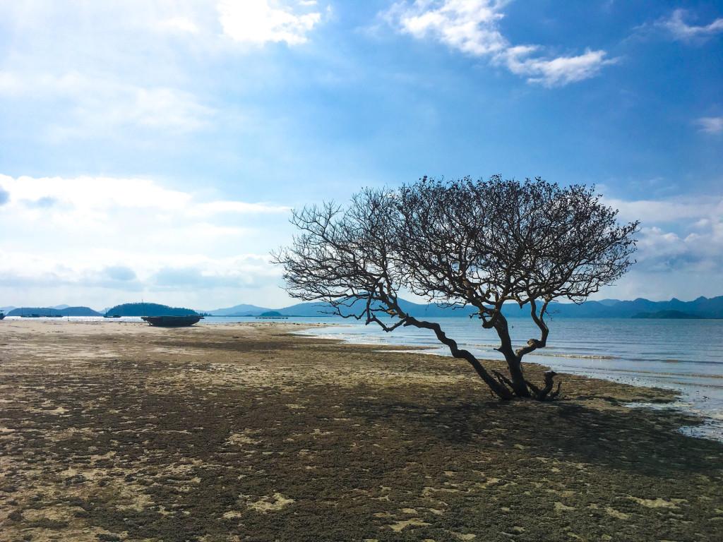 Đảo Quan Lạn: Quan Lạn hoang sơ nằm trong vịnh Bái Tử Long, thuộc địa phận huyện đảo Vân Đồn, là điểm đến không còn xa lạ với dân mê xê dịch. Tuy là điểm đến không mới, Quan Lạn vẫn thu hút du khách bởi vẻ đẹp thiên nhiên hoang sơ, bầu không khí trong lành, các hoạt động trải nghiệm du lịch gần gũi với dân địa phương. Ảnh: Tuấn Đào.