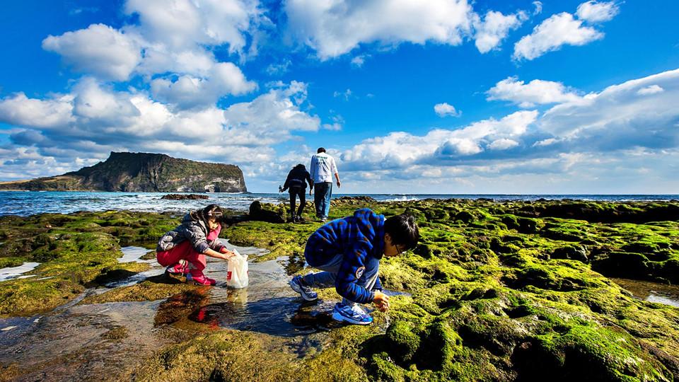 """Từng xuất hiện trong hàng loạt bộ phim truyền hình ăn khách của xứ sở kim chi như Nàng Dae Jang Geum, Thái vương tứ thần ký, Khu vườn bí mật hay Vườn sao băng, đảo Jeju là sự lựa chọn hàng đầu của du khách khi đến du lịch Hàn Quốc. Được mệnh danh là """"Hawaii của Hàn Quốc"""", đảo rộng 1.846 km2 với những tảng đá núi lửa màu đen, đủ hình dạng nằm khắp nơi ở hai bên đường, xếp thành hàng rào bao quanh những khu vườn quýt hay dọc theo các bãi biển. Ảnh: Shutterstock."""
