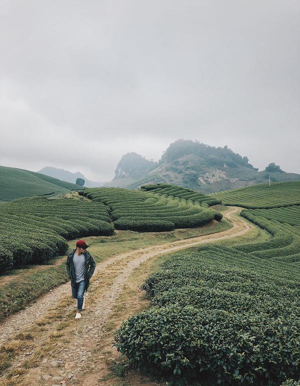 Vượt đèo Hoà Bình vào đất Sơn La, những con đường hiện ra thơ mộng, đôi khi che phủ bởi màn sương mờ ảo. Du khách lái xe máy cần cẩn thận khi đi qua những con đường này. Một trong những điểm dừng chân phải kể đến đó là đồi chè nằm trên những sườn đồi. Du khách không thể bỏ qua đồi chè trái tim Mộc Sương, nơi được nhắc đến là một trong số những đồi chè đẹp nhất ở Việt Nam. Rừng thông hay hồ Bản Áng cũng là những địa danh bạn có thể cho vào lịch trình. Ảnh: Hoàng Tuấn Anh.