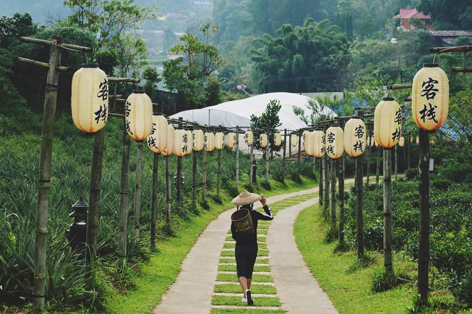 Ban Rak Thai: Nằm giữa núi đồi mênh mông ở phía Bắc Thái Lan, ngôi làng Ban Rak Thai mang vẻ đẹp nguyên vẹn, cổ kính. Đến đây, chỉ cần đưa máy lên là bạn có thể tạo ra vô số tấm hình tuyệt đẹp với mảng xanh của núi rừng. Ảnh: @stephanieecate.
