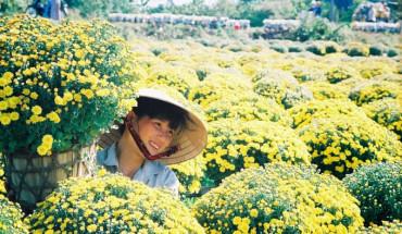 5-diem-den-o-phuong-nam-ly-tuong-cho-ky-nghi-tet-nguyen-dan-ivivu-1