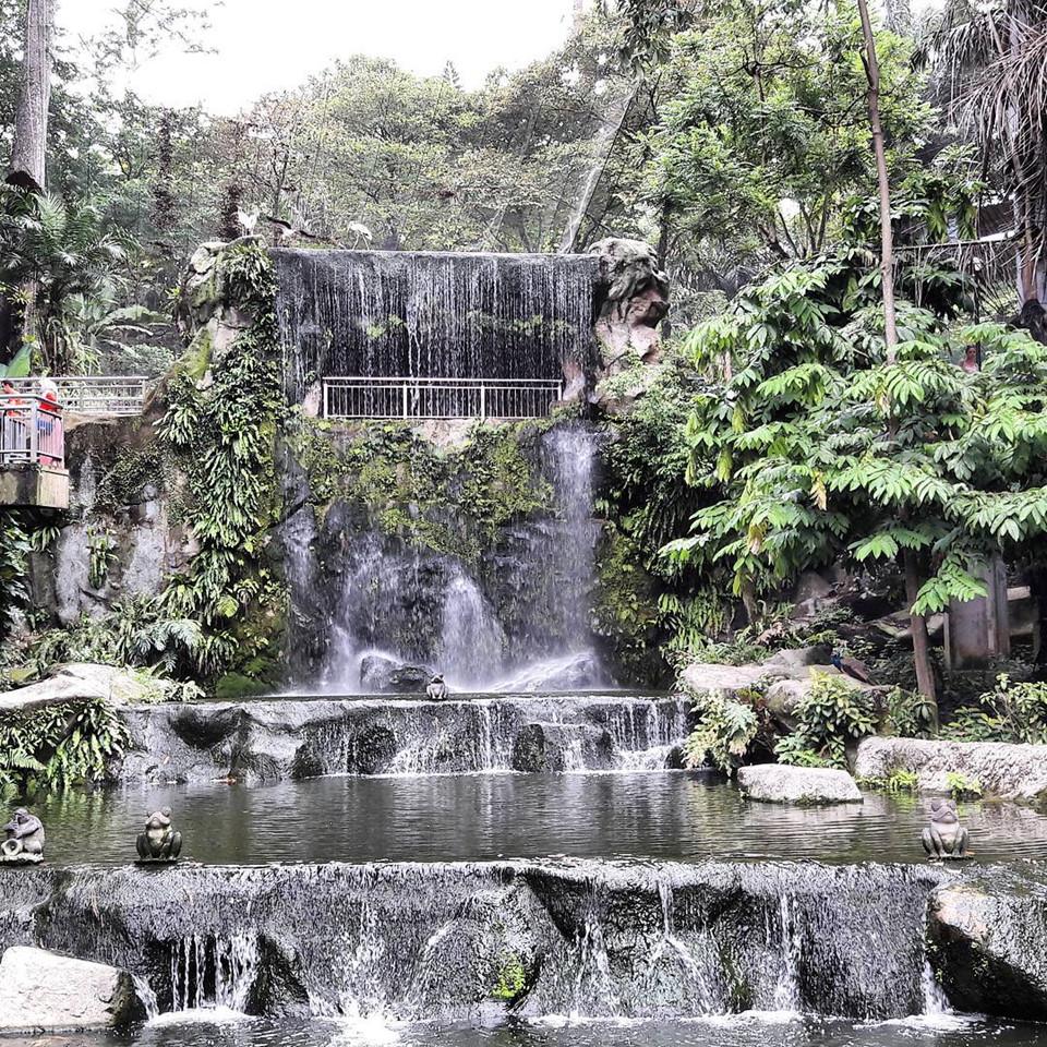5-noi-thu-hut-o-singapore-danh-cho-nguoi-yeu-dong-vat-ivivu-13