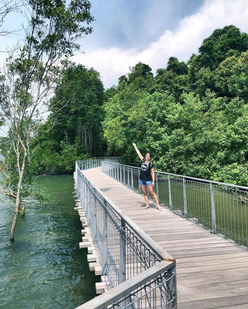 5-noi-thu-hut-o-singapore-danh-cho-nguoi-yeu-dong-vat-ivivu-4