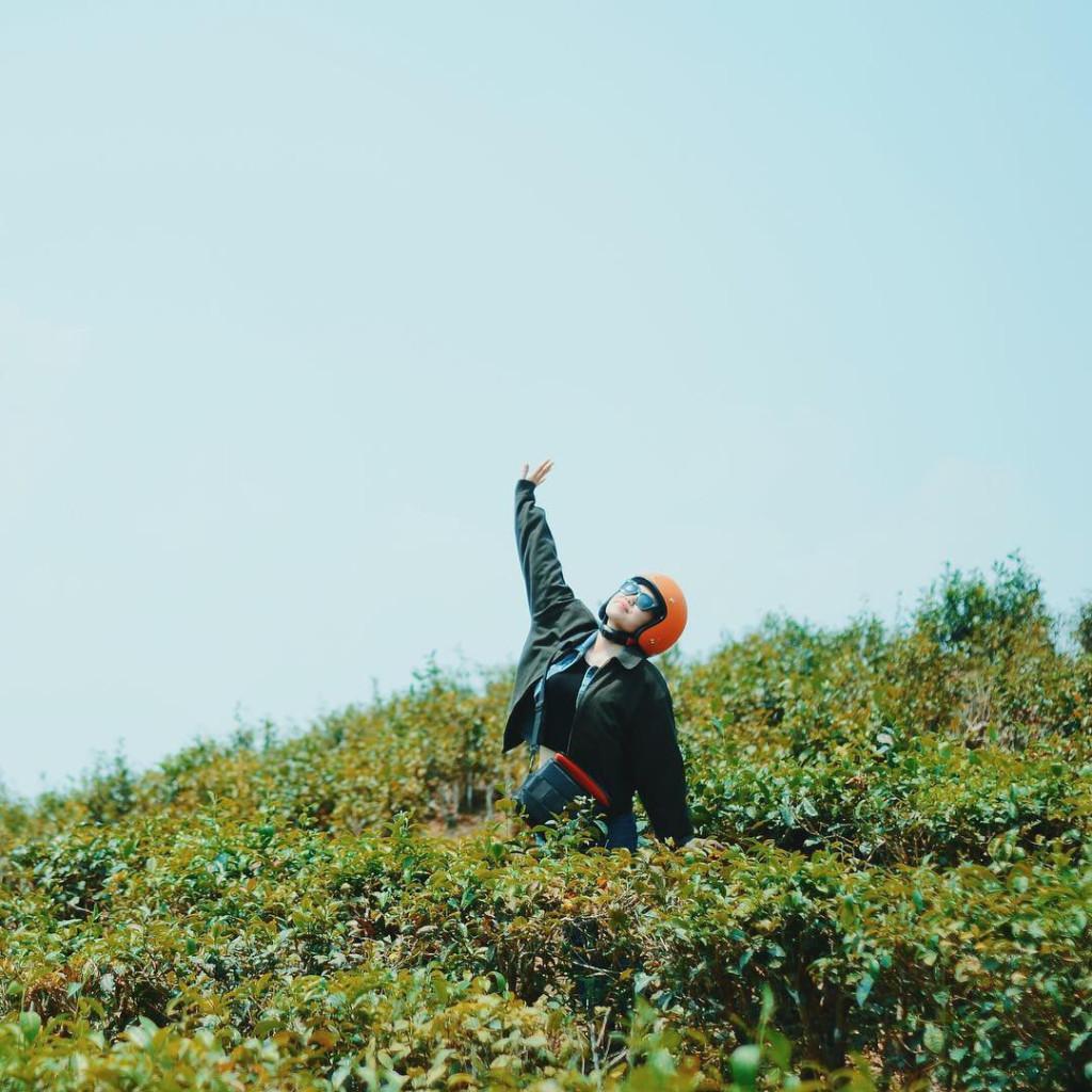 Đồi chè Đông Giang (Quảng Nam): Nằm cách thành phố Đà Nẵng khoảng 100 km về phía Tây, đồi chè Đông Giang níu chân du khách bởi vẻ đẹp thơ mộng, bát ngát cả một vùng trời. Nơi đây mùa nào cũng đẹp nhưng đẹp nhất là từ tháng 8 đến tháng 10. Để có được bộ ảnh lung linh ảo diệu, bạn nên đến đây từ sáng sớm, đắm mình trong ánh mặt trời mọc và màn sương huyền ảo. Ảnh: @da.little318, @pursuitofpeacee.