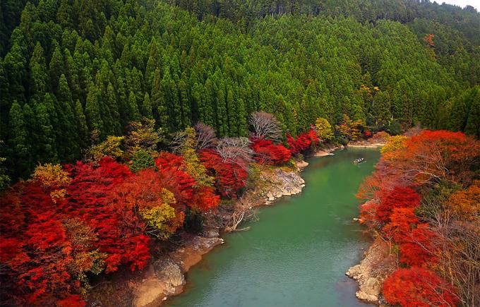 Rừng tre Arashiyama nằm trong khu bảo tồn thiên nhiên rộng khoảng 16 ha, tại quận Arashiyama, ngoại ô phía tây thành phố Kyoto. Nơi này đã nổi tiếng từ thời Heian (794-1185), khi tầng lớp quý tộc lựa chọn đến đây để nhìn ngắm vẻ đẹp thiên nhiên bên cạnh các cảnh sắc khác như hoa anh đào và rừng lá chuyển màu vào mùa thu. Ảnh: DevianArt.