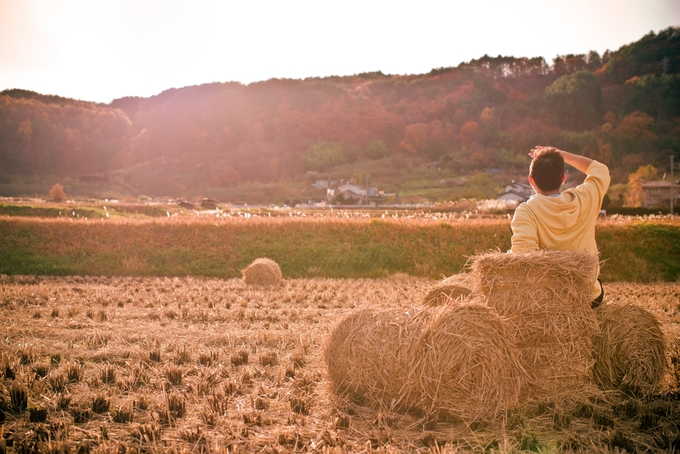 """Ngoài ra, nếu chọn thời điểm cuối thu, ngay mùa gặt thì bạn còn được chụp ảnh """"sống ảo"""" giữa cảnh làng quê đẹp như tranh vẽ. Những cuộn rơm xếp trên đồng lúa trơ trọi, phía xa là đồi núi với cây chuyển màu đỏ, vàng vào mùa thu, thêm ánh nắng cuối chiều tạo nên một bức tranh đẹp khỏi chê."""