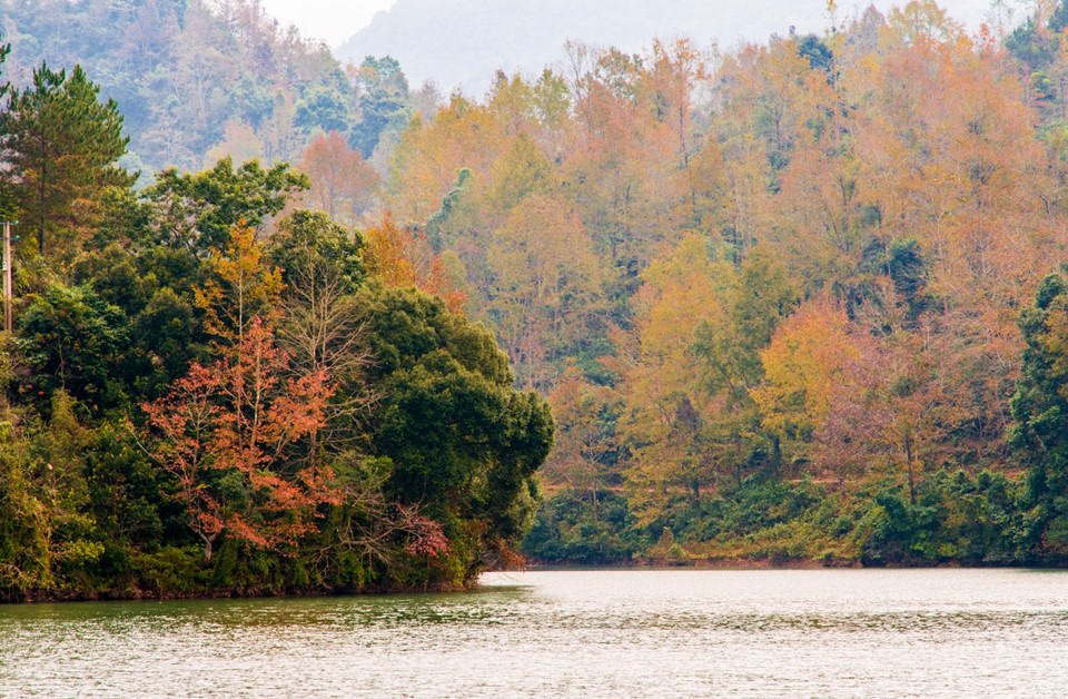 """Tôi nghĩ bụng: """"Hay là hủy kế hoạch đã lên để thực hiện chuyến đi ngắm rừng thay lá"""". Vậy là, tôi đã dành trọn hai ngày lang thang Cao Bằng đầy thú vị và lạ lẫm với nhiều góc ảnh như trời Tây vào độ thu về. Cao Bằng thuộc vùng Đông Bắc Việt Nam, cách Hà Nội 286 km. Nơi đây được du khách biết đến với núi sông hùng vĩ, thiên nhiên hoang sơ."""