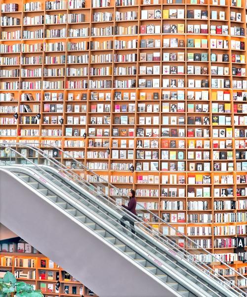 Điểm nổi bật nhất, mang thương hiệu của nơi này chính là giá sách khổng lồ, cao bằng 2 tầng nhà, nằm ngay cạnh một cầu thang máy. Ngoài ra, thư viện còn 2 kệ sách như vậy, đều cao 13 m và trang trí rất đẹp mắt. Bên dưới là bậc thang để du khách có thể ngồi thưởng thức sách, tạp chí.