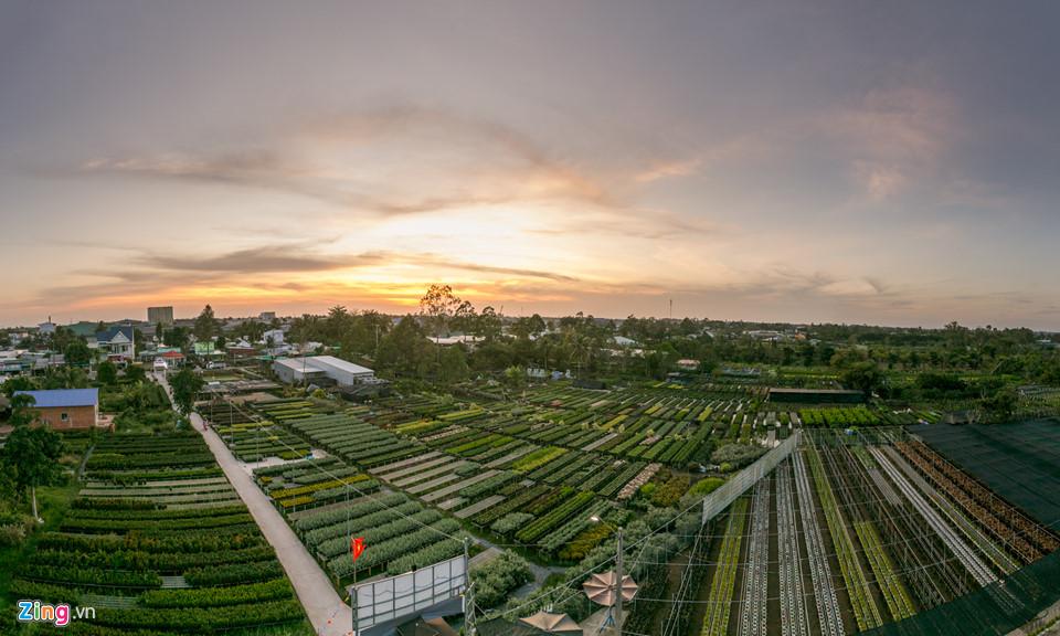 Nằm tại xã Tân Quy Đông, thành phố Sa Đéc, tỉnh Đồng Tháp, làng hoa kiểng Tân Quy Đông là vựa hoa lớn nhất khu vực Nam Bộ, cung cấp hoa cho khắp các tỉnh trên cả nước.