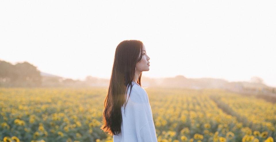 Chỉ là những bông hoa đơn sắc vàng trên nền lá xanh, dưới bầu trời mùa đông có nắng, nhưng hoa hướng dương chẳng hề nhàm chán mà khiến người ta cảm thấy yêu đời, vui vẻ hơn.