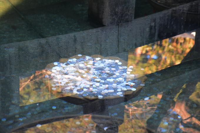 Con cuối cùng bị nước nóng làm mù mắt nên cầu khẩn Jajang tha mạng, cho phép nó trở lại hồ nước. Đổi lại, nó sẽ canh giữ ngôi chùa mãi mãi. Lời cầu khẩn của con rồng được Jajang chấp nhận. Hiện hồ nằm ngay cạnh chính điện của chùa. Nhiều du khách đến đây thường tung đồng xu xuống hồ để cầu may.