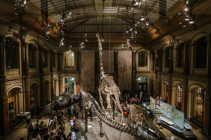 Với con số 200, người ta nói rằng Berlin còn có nhiều bảo tàng hơn số ngày mưa trong một năm. Ảnh: Oana Popa.