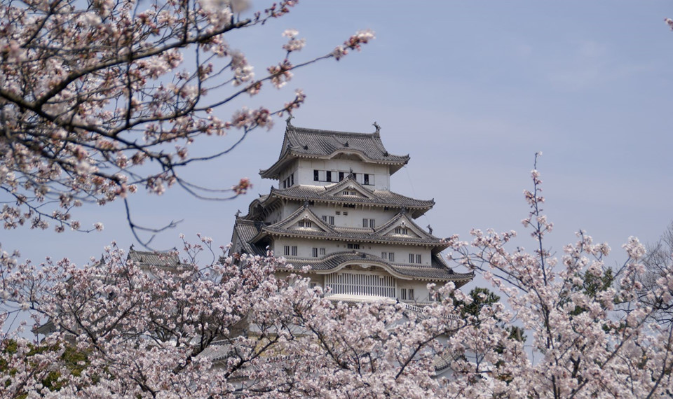 Lâu đài Himeji (Hyogo): Tòa lâu đài trắng tọa tại Hyogo là một trong những địa điểm hút khách du lịch bởi kiến trúc độc đáo. Toàn cảnh lâu đài được thiết kế với cảm hứng hình ảnh con chim bay trên bầu trời. Himeji là sự kết hợp của 83 tòa nhà nhỏ. Lâu đài thế kỷ 17 được trang bị hệ thống phòng thủ chắc chắn. Lâu đài từng xuất hiện trong rất nhiều bộ phim nổi tiếng Nhật Bản và thế giới như siêu phẩm James Bond: You only live twice. Ảnh: Kenichi Masuo.