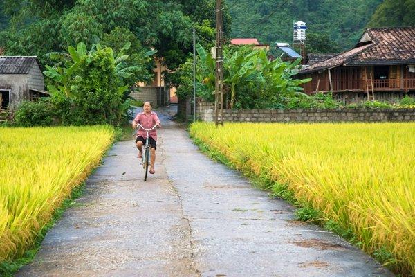 Cảnh sắc thanh bình của làng quê.