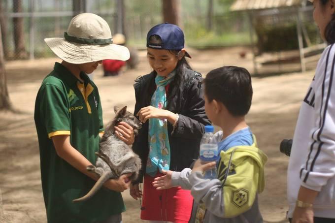Chia sẻ với Ngoisao.net, ZooDoo cho biết mỗi cá thể thú khi gia nhập vườn đều cần tối thiểu 6 tháng để tập làm quen, chấp nhận ở gần con người... Mỗi loài có đặc tính khác nhau nên phải chăm sóc kỹ lưỡng. Ngoài ra, việc đảm bảo an toàn, vệ sinh thú y là yêu cầu hàng đầu. Hiện tại nơi này có 2 bác sĩ thú y chuyên trách tại chỗ.