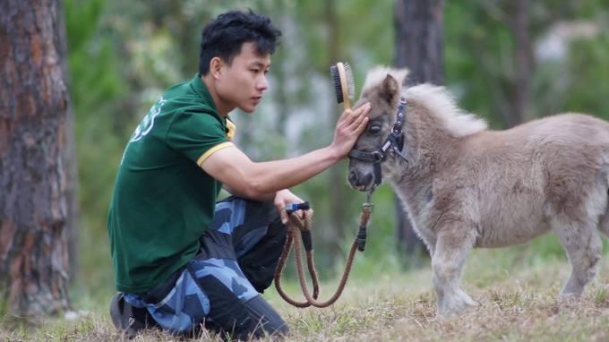 Đồng thời, nhân viên chăm sóc thú được đi huấn luyện 2 lần/năm tại Thái Lan và Malaysia để có thể cập nhận kiến thức liên tục. Thời điểm đến tham quan vườn tốt nhất là vào buổi sáng, trời mát và ít mưa. Còn mùa đẹp nhất là mùa hè nắng ráo.