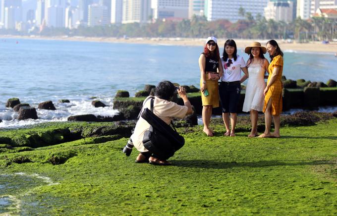 Vì bãi rêu nằm ngay trong lòng thành phố, thu hút khá nhiều nhiếp ảnh gia đến sáng tác.