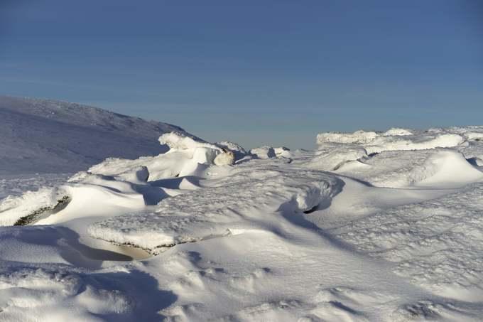 Tác giả Jon Roberts chụp chú thỏ trên nền băng tuyết trắng xóa tại khu vực núi Cairn Lochan thuộc công viên Cairngorms, Scotland. Vườn quốc gia lớn nhất nước Anh (4.530 km2) được thành lập năm 2003, gồm các ngọn núi và đồi thấp của dãy Cairngorms.