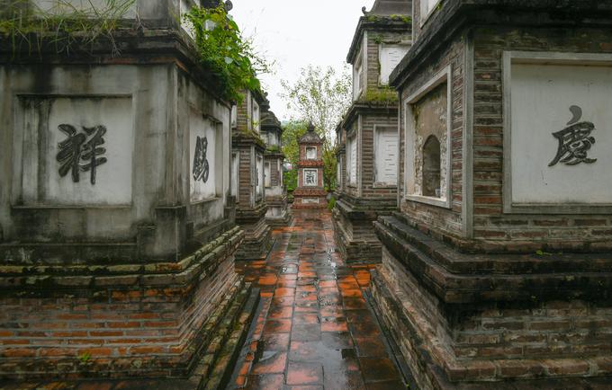 Vườn tháp hiện có 8 tháp gạch là nơi yên nghỉ của các vị sư từng tu tại chùa, có niên đại từ thời Lê đến thời Nguyễn, khoảng từ thế kỷ 14 đến 19.