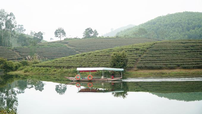 Những chiếc thuyền máy xuôi theo lòng hồ, rẽ nước, xé tan màn sương mờ ảo đưa bạn đi sâu vào bên trong. Mùi thơm của chè xộc thẳng vào mũi kèm bầu không khí trong lành sẽ giúp bạn thư giãn và lấy lại năng lượng.
