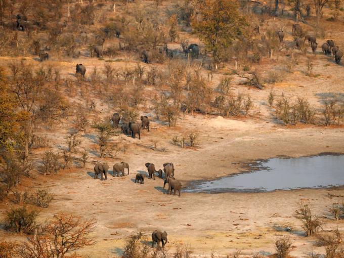 """Trong một cuộc phỏng vấn năm 2017 với BBC, Hoàng tử Harry cho biết một trong những lần đầu tiên đi chơi riêng của hai người là tại Botswana, Châu Phi. Chuyến đi này cũng là cuộc hẹn hò thứ ba của hoàng tử và Meghan. """"Tôi đã thuyết phục được cô ấy đi cùng đến Botswana. Chúng tôi đã cắm trại dưới những vì sao và quyết định tìm hiểu nhau"""". Nằm ở Nam Phi, Botswana là một điểm đến dành cho những người yêu thích động vật hoang dã. Ngay cả không phải người của Hoàng gia, bạn cũng có thể trải nghiệm cảm giác """"ngủ dưới những vì sao"""" giữa sa mạc."""