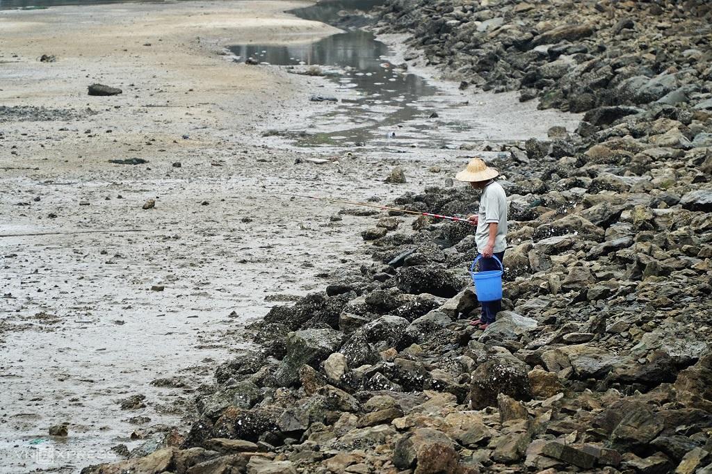 Người dân thường câu cù kỳ từ các hốc đá.