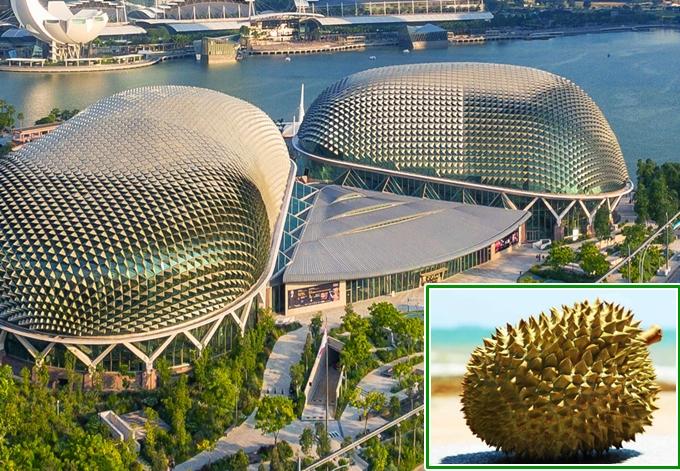 4-cong-trinh-do-an-thu-vi-o-singapore-ivivu-1