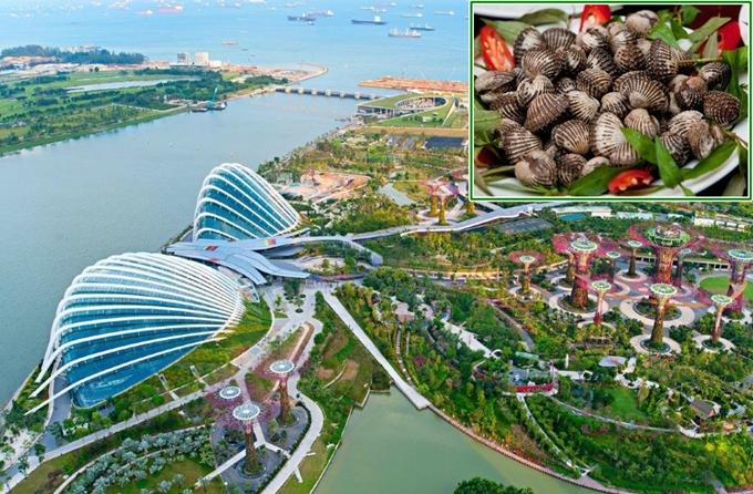 4-cong-trinh-do-an-thu-vi-o-singapore-ivivu-4