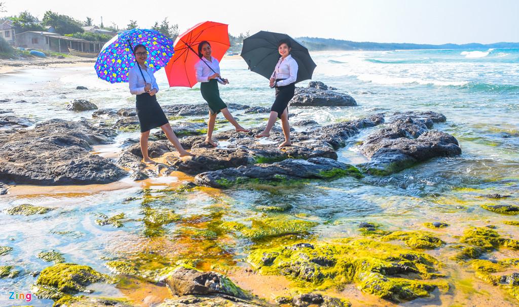 Các bạn trẻ cầm dù che nắng rực rỡ sắc màu check-in khám phá bãi rêu xanh biếc nổi bật trên nền đá đen trầm tích núi lửa. Theo người dân địa phương, thời điểm khám phá bãi rêu trầm tích núi lửa ven biển, đảo Quảng Ngãi là lúc sáng sớm hay về chiều khoảng 15-16h.