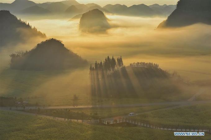 Ở Trung Quốc, ngoài La Bình (Vân Nam) thì Thanh Hải cũng là một địa danh nổi tiếng với hoa cải vàng nhưng mùa hoa lại sớm hơn, khoảng tháng 7-8.
