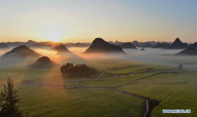 Nhiều người còn tới đây từ sớm để chứng kiến ánh bình minh ló rạng sau những ngọn đồi nhấp nhô giữa cánh đồng hoa vàng tít tận chân trời.