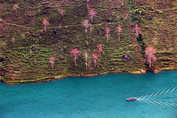 Sông Nho Quế chảy trên dải đất Việt Nam khoảng 46 km, qua lớp đá tai mèo lởm chởm của hệ thống công viên địa chất toàn cầu cao nguyên đá Đồng Văn, tạo nên dòng chảy mạnh với vô số thác ghềnh trắng xóa. Dòng nước xen giữa những hẻm vực, thung lũng ẩn hiện giữa non cao núi bạc và mây trời Hà Giang.