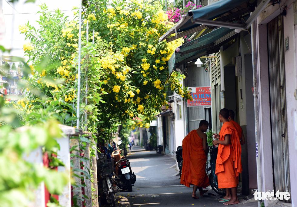 Sài Gòn đã có những mùa hoa của riêng mình?