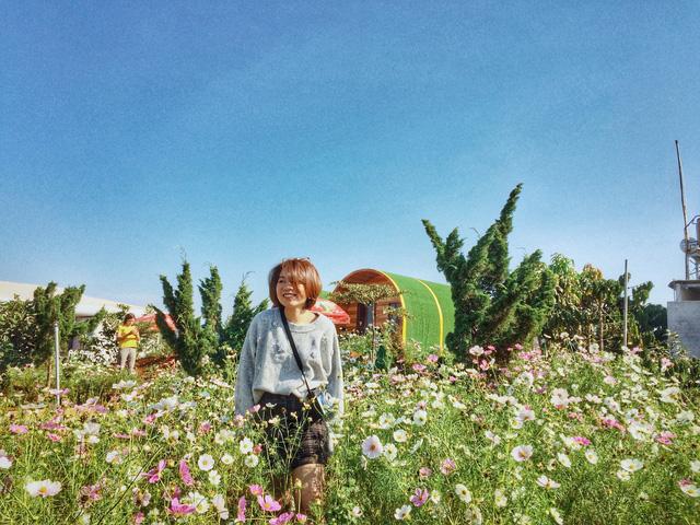 Tadung Topview Homestay có cánh đồng với đủ loại hoa khác nhau. (Ảnh: Bảo Bình)