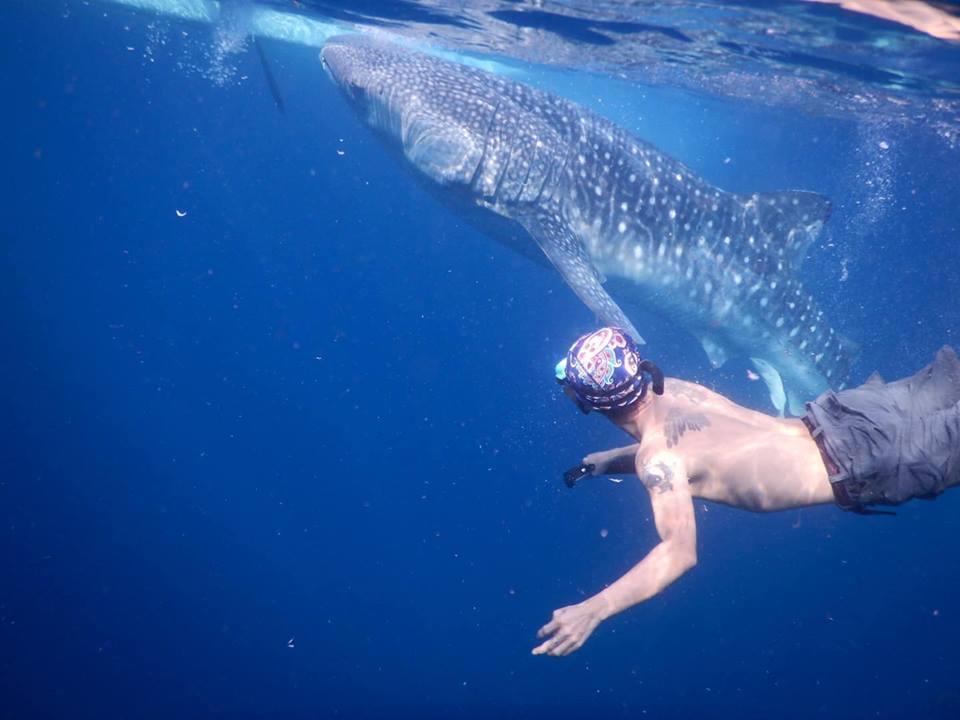 Kết quả hình ảnh cho lặn biển Philippines