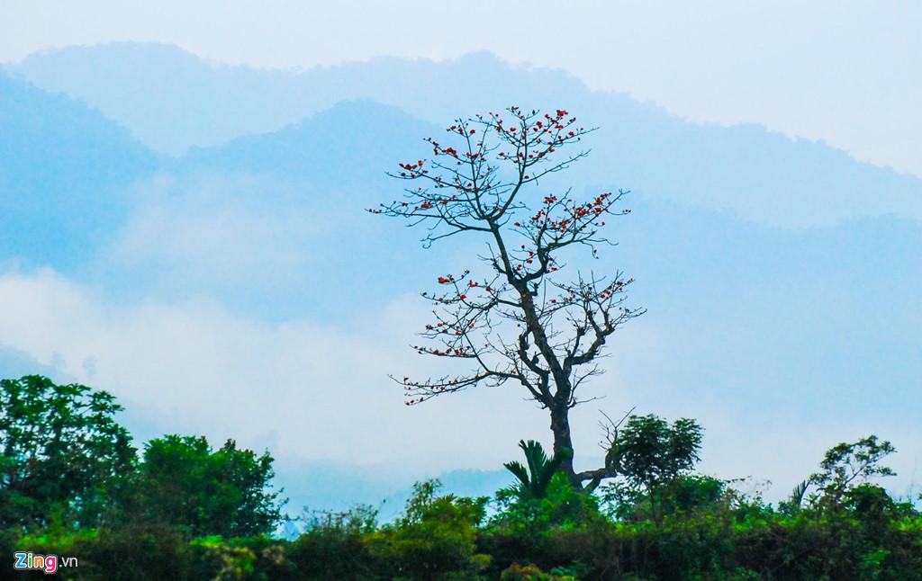 Tháng 3. Mây trời sà xuống thấp ngang lưng chừng những cây hoa gạo cổ thụ bung nở khắp các sườn đồi.